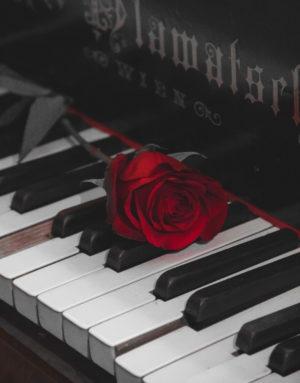 En röd ros ligger på ett piano